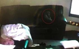 Cô gái trẻ hoảng hốt khi thấy bóng trắng bay loạn xạ trong nhà