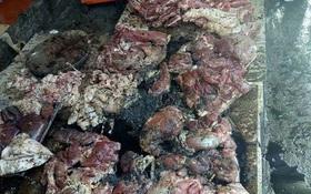 Bắt khẩn cấp người hắt luyn trộn chất thải vào sạp thịt lợn ở Hải Phòng