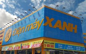 TP. HCM: Trộm đột nhập siêu thị Điện máy Xanh cuỗm 25 chiếc điện thoại trị giá gần 500 triệu đồng