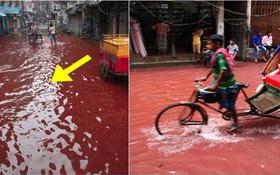 Sự thật đằng sau dòng nước đỏ như máu xuất hiện trên đường sau cơn mưa khiến người dân kinh sợ