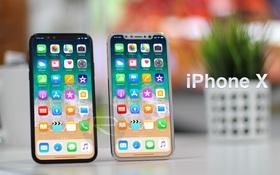 Đây là bộ ảnh sẽ cho bạn thấy tường tận iPhone 8 đẹp tới mức nào
