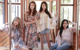 Chính thức xác nhận: T-ara sẽ tổ chức concert tại Việt Nam vào 4/11