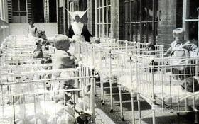 Hơn 400 hài cốt được tìm thấy sau vườn và sự thật rùng rợn đằng sau cánh cổng một cô nhi viện lớn của Anh