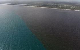 Bão Irma tan từ lâu, biển Florida vẫn chưa đổi lại màu