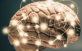 Không chỉ ảnh hưởng đến tâm trạng, căng thẳng kéo dài còn có thể khiến não bạn 'teo nhỏ' lại