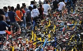 """Trung Quốc """"chìm"""" trong biển xe đạp vào dịp Thanh Minh"""
