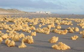 Bí ẩn hàng triệu vật thể lạ màu vàng không rõ nguồn gốc rải đầy bãi biển