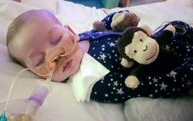 """Cả thế giới giành quyền sống cho cậu bé 10 tháng tuổi nhưng """"phép màu"""" cuối cùng cũng không xuất hiện"""