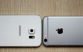 Đích thân cựu phó chủ tịch của Google khuyên người dùng bỏ Android, chọn iPhone nếu muốn chụp ảnh đẹp.