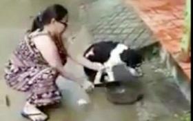 """Người phụ nữ cầm dao chặt chân chó: """"Tôi làm vậy để bảo vệ và không muốn ai đánh bả, giết thịt nó"""""""