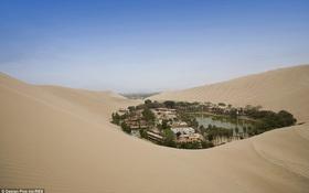 Không thể tin nổi: Giữa sa mạc khô cằn có một ốc đảo xinh lung linh thế này