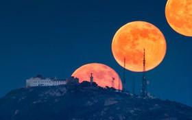 Trăng đang sáng lắm rồi và đây là cách để có những bức hình chụp siêu trăng đẹp nhất vào đêm nay
