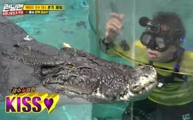 """Sợ hãi tột độ, Lee Kwang Soo vẫn dành cho """"nàng"""" cá sấu này 1 nụ hôn!"""