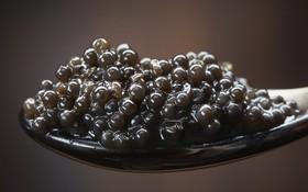 Cách thưởng thức Caviar - món ăn đắt đỏ luôn góp mặt trong các bữa tiệc của hội siêu giàu