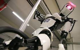 Vào mà xem, robot bây giờ còn biết cả múa cột đây này!