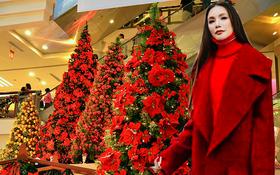 Giáng sinh chưa đến mà Hồ Quỳnh Hương đã cosplay bà già Noel ngay rồi?