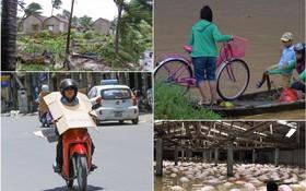 Nhìn lại những hiện tượng thời tiết, thiên tai khiến người dân Việt Nam điêu đứng năm 2017