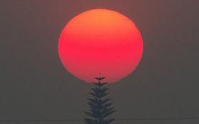 7 ngày qua ảnh: Mặt trời đỏ rực trong cháy rừng ở Mỹ