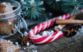 Sự thật đằng sau 7 lầm tưởng về Giáng sinh: Hình ảnh ông già Noel do Coca-cola sáng tạo, tự sát tăng cao vào dịp cuối năm?