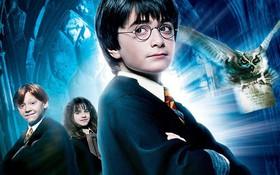 Fan ruột của Harry Potter chắc sẽ nhận ra 9 nhân vật này trong nháy mắt