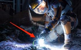 """""""Khoai tây hoàn toàn có thể trồng được trên sao Hỏa"""" - NASA cho biết"""