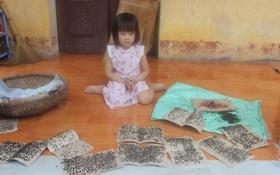 Kinh hoàng cảnh nhà dân sống gần bãi rác lớn nhất Hà Nội bị hàng nghìn con ruồi bủa vây