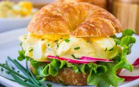 Sandwich salad trứng cầu vồng: Vừa đẹp vừa đủ chất cho bữa ăn cân bằng