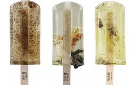 Nhìn những cây kem này bắt mắt thật đấy nhưng bạn sẽ không dám ăn nó nếu biết sự thật này