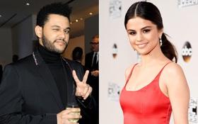 Selena Gomez - The Weeknd công khai tình cảm trên Instagram, mặc kệ Bella và Justin nghĩ gì