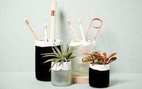 Tái chế vỏ chai thành đồ dùng tiện ích cực đơn giản