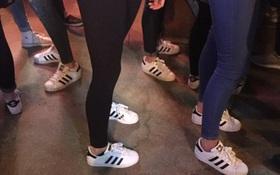 """Bức ảnh chứng minh Trái đất sắp bị Adidas Superstar """"thống trị"""" đến nơi rồi!"""