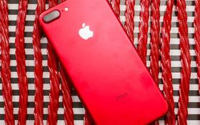 iPhone 7/7 Plus ĐỎ RỰC sẽ về Việt Nam sớm, màu đỏ chứng tỏ giá cao