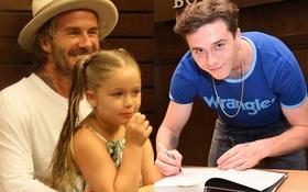Harper Beckham xinh xắn bụ bẫm ngồi trong lòng bố, đến ủng hộ anh trai tại sự kiện