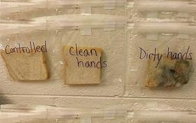 Chỉ 1 thí nghiệm đơn giản, giáo viên khiến học sinh của mình không bao giờ dám quên làm điều này nữa