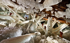 """Chuyên gia NASA phát hiện sinh vật kỳ lạ """"sống thọ"""" 50.000 năm trong hang động ở Mexico"""