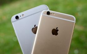 Apple rục rịch bán ra một phiên bản iPhone tầm trung tại Việt Nam