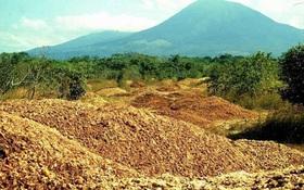 Một công ty nước ép đổ 12.000 tấn vỏ cam xuống khu bảo tồn thiên nhiên, 19 năm sau, đây là kết quả họ đạt được