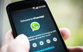 WhatsApp ra mắt tính năng định vị bạn bè, rất đáng quan ngại cho những người có gấu