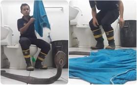 Góc hữu ích: Lính cứu hỏa Thái Lan hướng dẫn cách xử lý khi gặp rắn hổ mang ở trong nhà chỉ với 1 chiếc khăn tắm