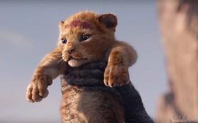 """Vừa khoe diện mạo trong teaser """"The Lion King"""", chú sư tử Simba khiến cả thế giới như tan chảy!"""