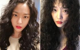 Seolhyun đổi tóc xù mì giống Sulli, nhưng liệu có xinh bằng Sulli không thì còn phải bàn