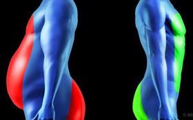 10 việc nên làm ngay và luôn nếu bạn muốn khỏe mạnh, giữ dáng vóc hấp dẫn mà lại tốn ít sức lực nhất có thể