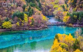 Thay vì về quê ăn tết, 7 địa điểm du lịch nổi tiếng Trung Quốc này sẽ khiến bạn vi vu quên lối về