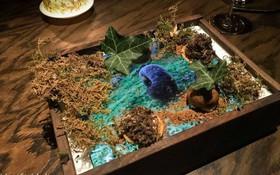 Độc đáo nhà hàng Mỹ sang chảnh dùng Ipad làm… đĩa đựng đồ ăn