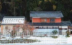 Lạnh băng giá mọi thứ nhưng mùa đông ở Nhật vẫn đẹp mê hồn