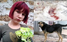 Thảm kịch trên đường đi học về: Bé gái 12 tuổi bị đàn chó hoang tấn công, tử vong đầy đau đớn
