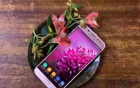 Trên tay Galaxy J7 Pro màu hồng nhẹ nhàng, nữ tính cho phái đẹp ngày xuân
