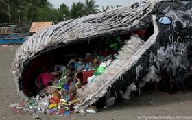 Bi kịch dưới đại dương: Cá voi đang ăn hàng trăm, hàng ngàn mảnh rác nhựa mỗi ngày