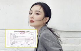 Lý Tiểu Lộ khởi kiện 2 netizen, đòi bồi thường tổn thất tinh thần và kinh tế hơn 3 tỷ đồng sau scandal ngoại tình
