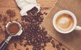 Cùng một loại cà phê nhưng vì sao ta thưởng thức hương vị ở mỗi nơi mỗi khác? Lý do là...
